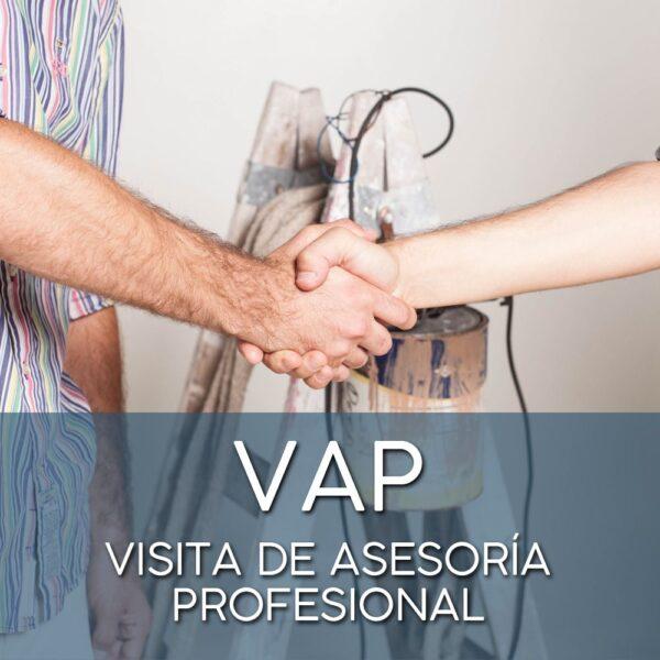 visita de asesoría profesional